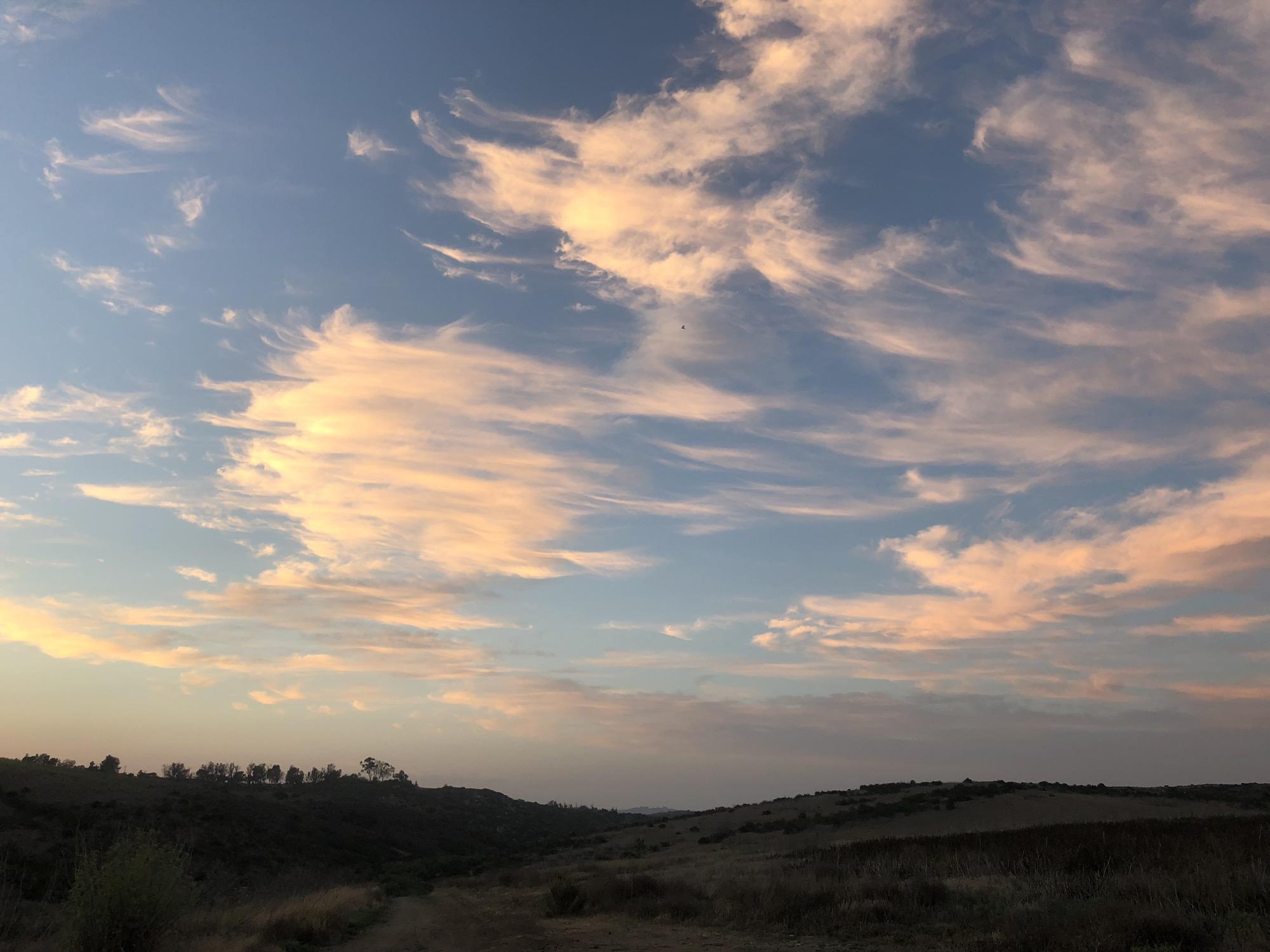 God painted the sky tonight